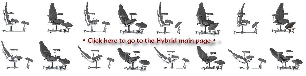 Hybrid Images